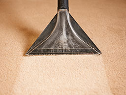 state-of-the-art carpet cleaning technology
